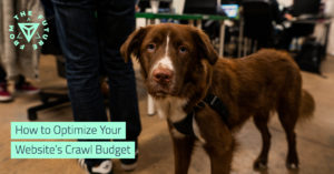 How to Optimize Your Website's Crawl Budget